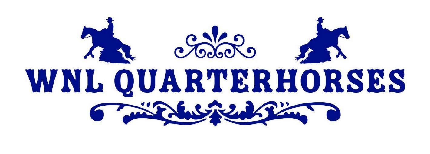 WnlQuarterHorses